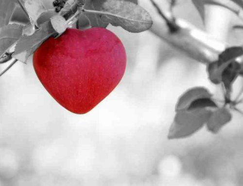 Lenormandgeflüster – Das Herz