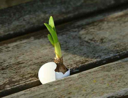 März – Umschwung zu Neuem